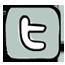 sarah-verroen-twitter